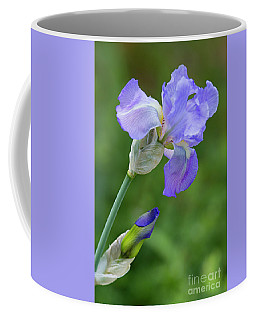 Iris Blue Coffee Mug