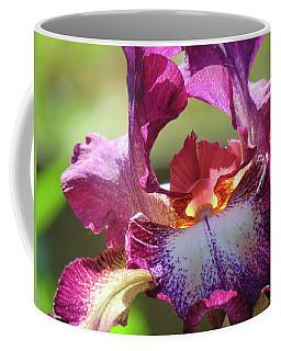 Iris Butterfly Coffee Mug