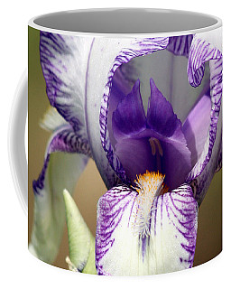 Iris Close-up Coffee Mug by Sheila Brown