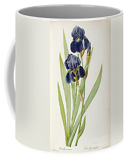 Iris Germanica Coffee Mug