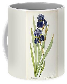 Iris Germanica Coffee Mug