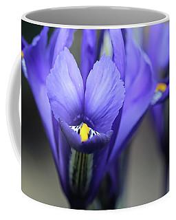 Iris Harmony Coffee Mug