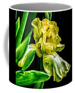 Iris In Bloom Coffee Mug