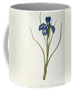 Iris Xyphioides Coffee Mug