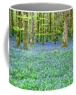 Irish Bluebell Woods - Lissadell, Sligo - New Leaves On The Trees And With A Carpet Of Blue Under Coffee Mug