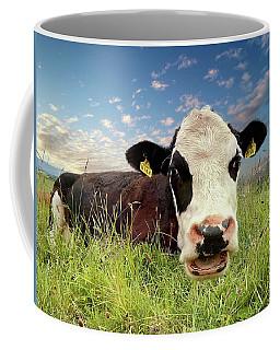 Irish Talking Cow Coffee Mug