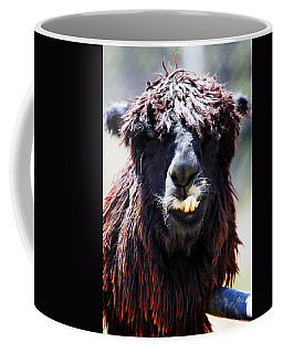 Coffee Mug featuring the photograph Is Your Mama A Llama? by Anthony Jones