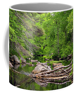 Isinglass River, Barrington, Nh Coffee Mug