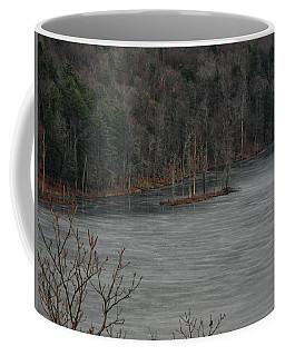 Island In A Frozen Canopus Lake Coffee Mug by Raymond Salani III