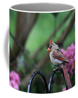 Coffee Mug featuring the photograph Isn't She Lovely by Trina Ansel