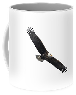 Isolated American Bald Eagle 2016-2 Coffee Mug