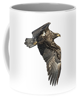 Coffee Mug featuring the photograph Isolated Eagle 2017-2 by Thomas Young