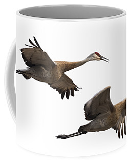 Isolated Sandhill Cranes 2016-1 Coffee Mug