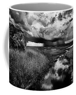 Isolated Shower - Bw Coffee Mug by Christopher Holmes