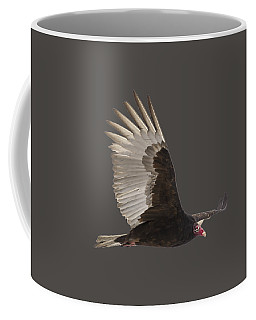Isolated Turkey Vulture 2014-1 Coffee Mug