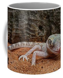 Coffee Mug featuring the photograph Israeli Sand Gecko - 1 by Nikolyn McDonald