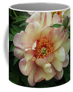 Itoh Kopper Kettle Peony Coffee Mug