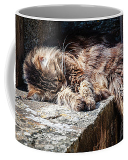 It's A Hard Life Coffee Mug