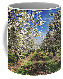 Coffee Mug featuring the photograph It's A New Day by Laurie Search