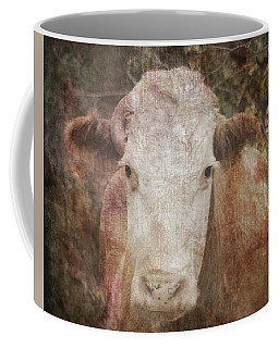 It's Been A Tough Life Darlin' Coffee Mug