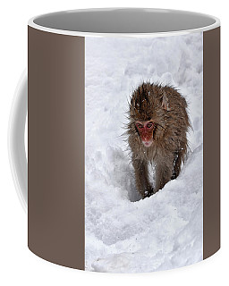 Its Here Somewhere Coffee Mug