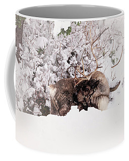 Coffee Mug featuring the photograph It's Rudy by Sabine Edrissi