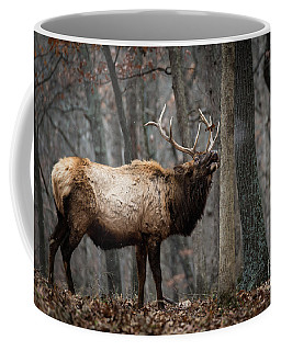 It's Snowing Coffee Mug by Andrea Silies