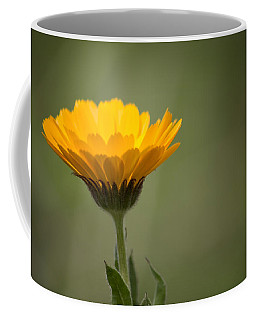 It's Spring Coffee Mug