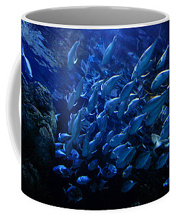 Coffee Mug featuring the photograph It's Time For School by Linda Unger