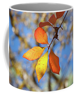 Coffee Mug featuring the photograph It's Time To Change by Linda Unger