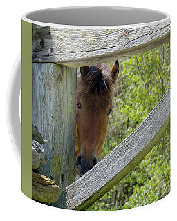 I've Been Framed Coffee Mug