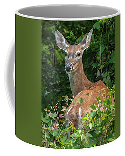 Ivy League Doe Coffee Mug