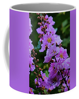 Jacaranda Coffee Mug by Craig Wood