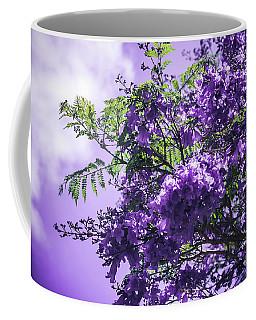 Coffee Mug featuring the photograph Jacaranda Mimosifolia Kula Maui Hawaii by Sharon Mau