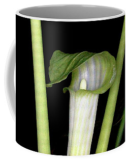 Coffee Mug featuring the photograph Jack In The Pulpit by Meta Gatschenberger