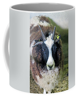 Jacob Sheep Coffee Mug