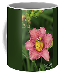 Jamaica Sunrise Daylily Coffee Mug