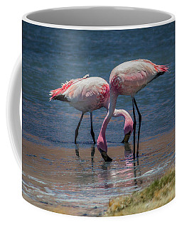 James's Flamingos, Salar De Uyuni, Bolivia Coffee Mug