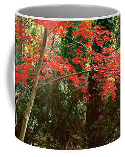Japanese Maple Coffee Mug