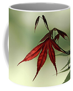 Japanese Maple Leaf Coffee Mug by Ann Lauwers