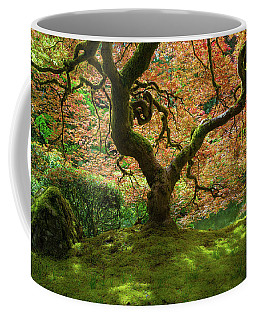 Japanese Maple Tree Bathed In Sunlight Coffee Mug