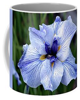 Japanese Water Iris In Blue 2695 H_3 Coffee Mug