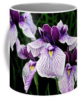 Japanese Water Iris In Purple 2714 H_2 Coffee Mug