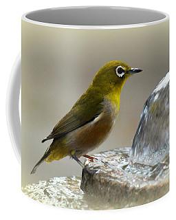 Japanese White Eye Coffee Mug