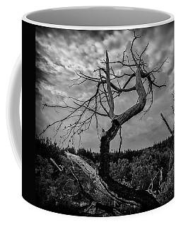J.d. Tree 1 Coffee Mug