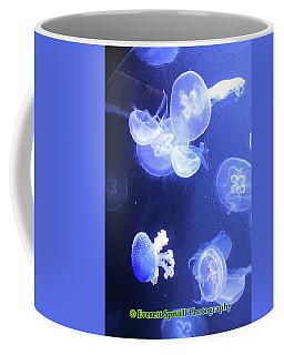 Jelly Fish At Parisian Aquarium Coffee Mug