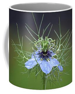 Jester's Hat Flower Coffee Mug