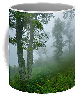 Coffee Mug featuring the photograph Jewell Hollow Overlook by Thomas R Fletcher