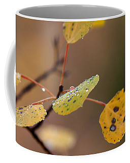 Jewels Of Autumn Coffee Mug