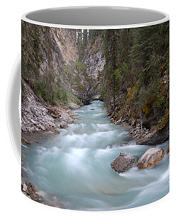 Coffee Mug featuring the photograph Johnston Canyon In Banff National Park by RicardMN Photography